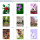 5 Different Ways to Hack Someone's Phone Pictures